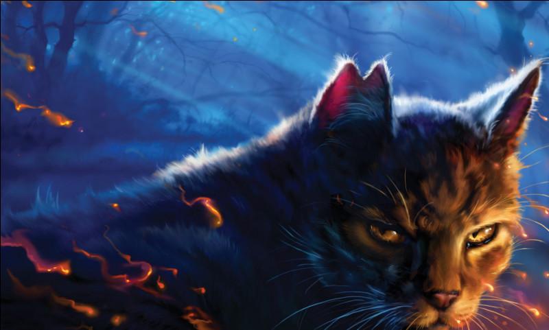 Après s'être fait exiler, Étoile du Tigre devient le chef d'un clan, lequel ?