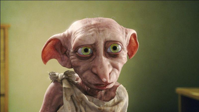 Avec qui Dobby s'est-il battu car il a insulté Harry ?