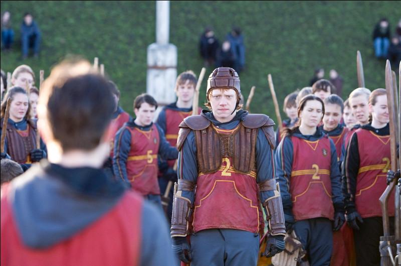 Lors d'un match de Quidditch, Dobby ensorcèle un Cognard. Mais, quelles équipes jouaient à ce moment-là ?