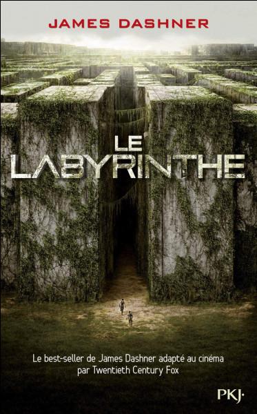 Qui est le premier à être arrivé dans le labyrinthe ?