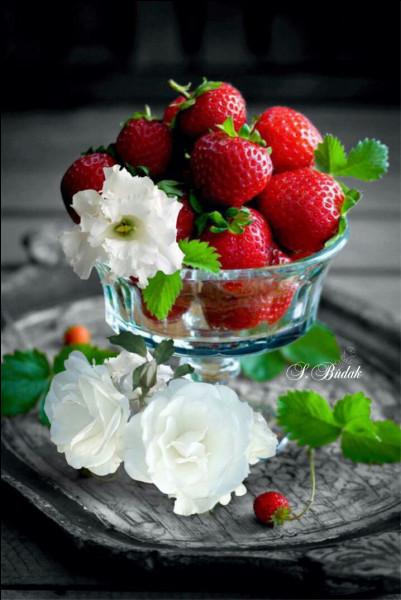 Laquelle n'est pas une variété de fraises ?