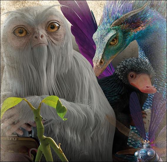 Quelle est ta créature magique favorite ?