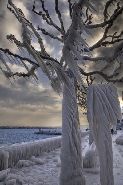 """Quel écrivain a obtenu le Goncourt en 1968, pour son roman """"Les Fruits de l'hiver"""" ?"""