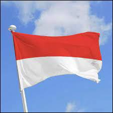 Regardez ce drapeau et dites-moi son pays !