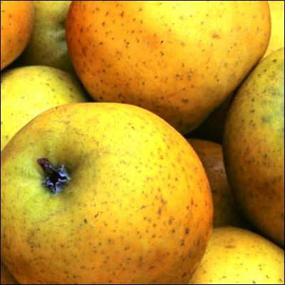 Lequel de ces termes désigne une pomme ?