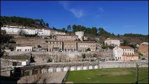 Commune occitane, dans l'arrondissement d'Alès, Robiac-Rochessadoule se situe dans le département ...