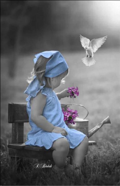 """Qui a écrit le roman policier """"Deux petites filles en bleu"""" ?"""