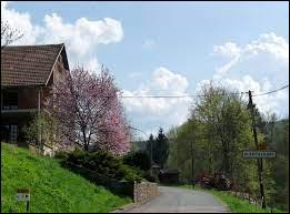 Nous commençons notre balade dominicale dans le Grand-Est, à l'entrée de Blancherupt. Petit village de 36 habitants, à 10 kilomètres de Schirmeck, il se situe dans le département ...