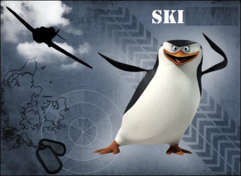 """Qui est ce personnage, un manchot déjanté, héros de la série télévisée """"Les Pingouins de Madagascar"""", il mène avec ses amis des missions paramilitaires pour sauver et protéger le Central Park Zoo ?"""