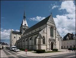 Ville du Centre-Val-de-Loire, dans l'arrondissement de Romorantin-Lanthenay, Selles-sur-Cher se situe dans le département ...