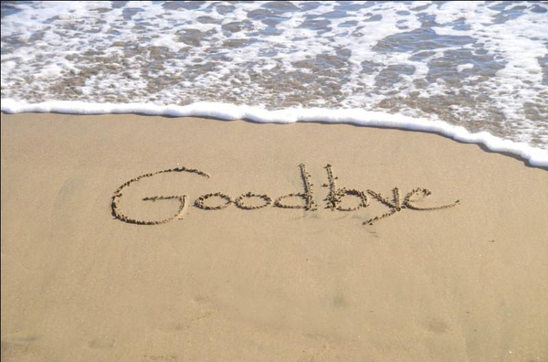 """À qui Polnareff disait-il """"Goodbye"""", dans sa chanson ?"""