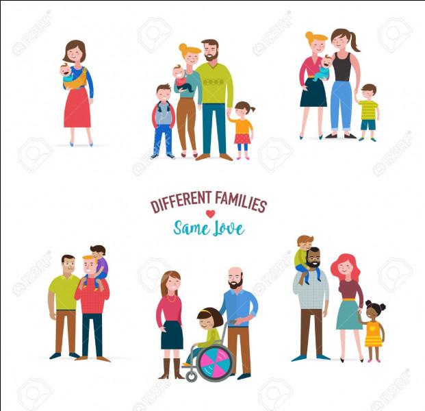 Quelle est la forme de famille la plus répandue en France ?