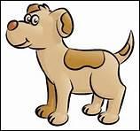Comment dit-on 'chien' en anglais ?
