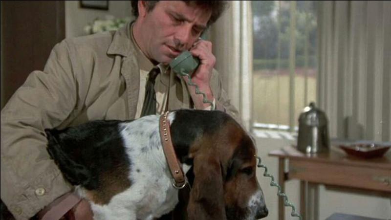 Quelle est la race du chien de Columbo ?