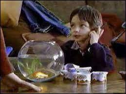 Comment s'appelle le poisson rouge dans la pub pour la mousse au chocolat Nestlé ?