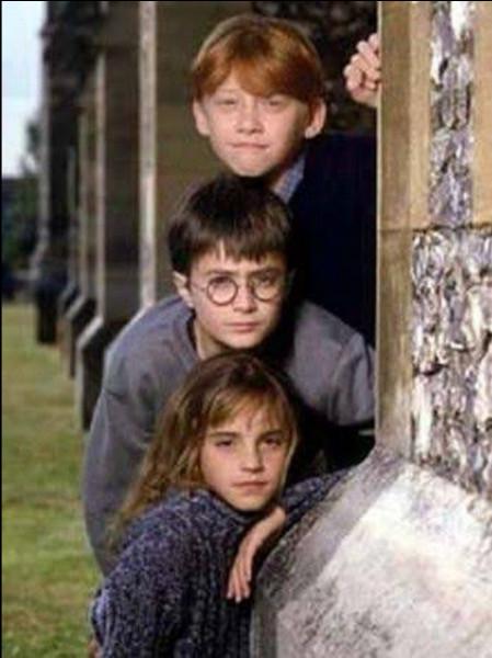 Dans le tome 1 : À la fin, quel est l'ordre que Harry, Ron et Hermione ont dû parcourir ?