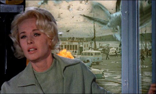 """""""Les Oiseaux"""", un des derniers grands classiques du cinéaste, sort sur les écrans en 1963. Quel est le nom de l'actrice interprétant le rôle principal, que nous voyons ici en photo ?"""