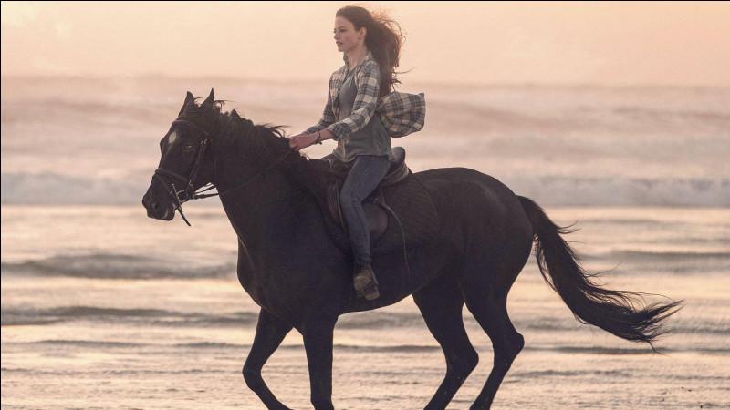 Quel est le nom de ce cheval ?(Je vous aide, Black...)