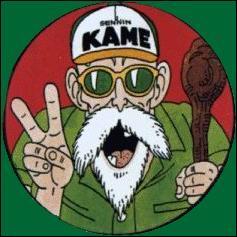 (Tortue Géniale) De quelle couleur est sa maison, la Kame House ?
