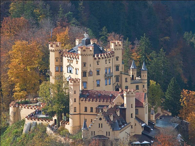 Il s'agit là d'un des célèbres châteaux des Carpates, en Roumanie :