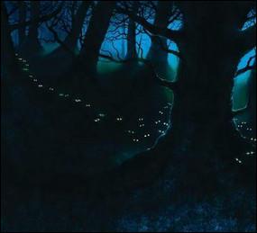 Qui entraîne Nuage Balafré dans la Forêt Sombre ?