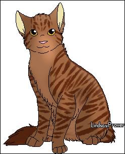 Quel est le nom de chaton d'Etoile Solitaire ?