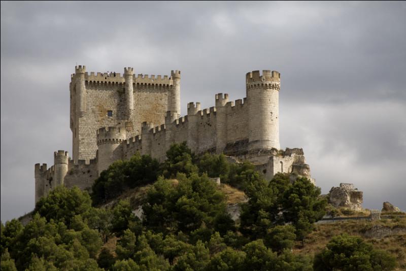 Il vous faut aller en Allemagne pour voir ce château bâti sur un éperon rocheux dominant la vallée de la Moselle :