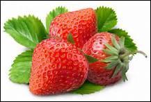 Comment dit-on 'fraise' en anglais ?