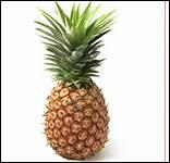 Comment dit-on 'ananas' en anglais ?