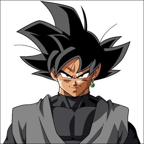 Qui est black Goku ?