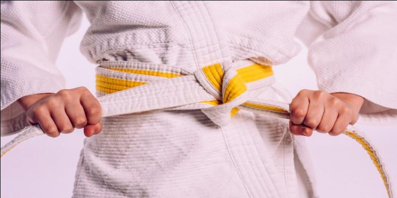 Au judo, de quelle couleur est la ceinture qui précède la ceinture marron ?