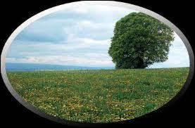 Mythologie : D'après la mythologie grecque, pourquoi les terres sont-elles moins propices à l'agriculture en hiver et en automne qu'en été et au printemps ?