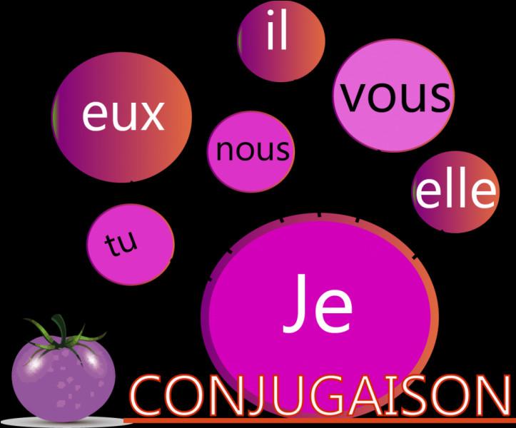 Français : Quel temps de conjugaison utilise-t-on quand on a un auxiliaire à l'imparfait ?