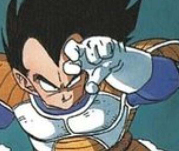 Dragon Ball Z : Vegeta