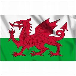 Qui est le joueur le plus capé du Pays de Galles ?