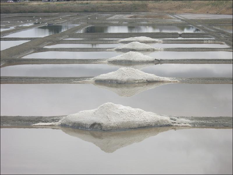 Tas de sel extrait d'un marais salant :