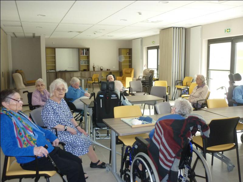 C'est un établissement qui accueille des personnes âgées dépendantes. Il possède plusieurs services pour répondre aux besoins de chacun des usagers. On a longtemps appelé ces établissements des maisons de retraite.