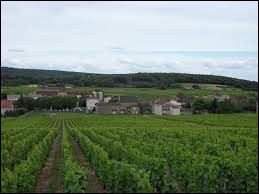 Village Saône-et-Loirien, Saint-Gengoux-de-Scissé se situe dans l'ex région ...