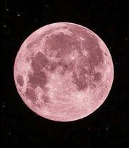 Qui est la déesse de la chasse et de la lune ?