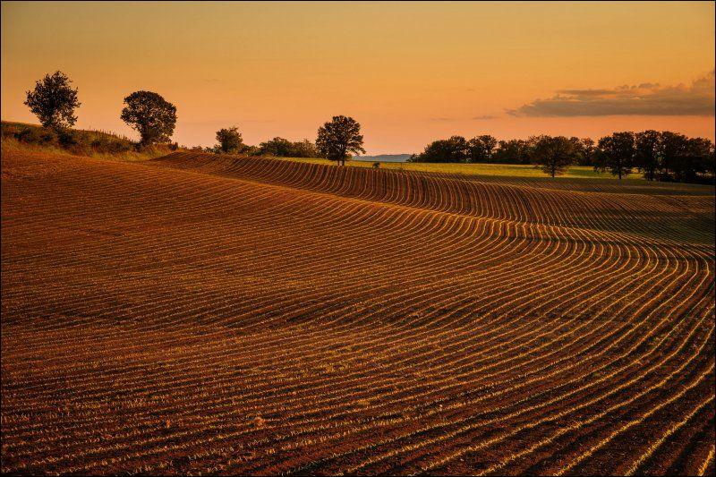Qui est la déesse de l'agriculture ?