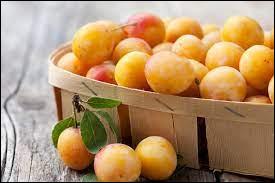 La mirabelle est le fruit emblématique de la Vendée.