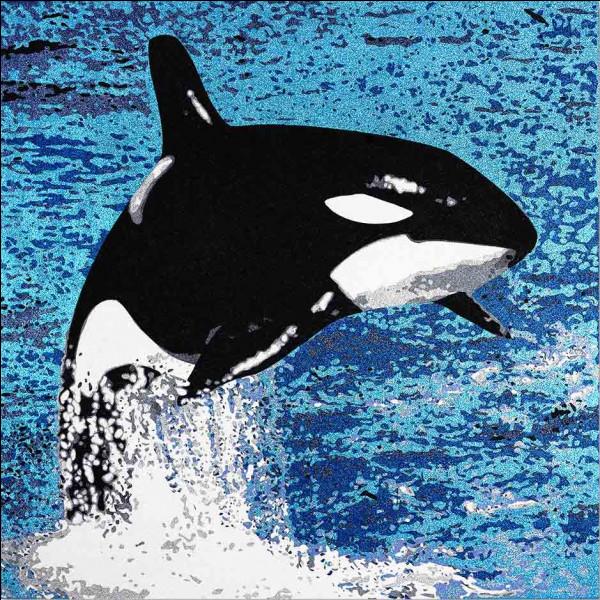 Quel est ce grand cétacé noir et blanc, vivant dans les mers du nord et attaquant tous les cétacés y compris la baleine ?