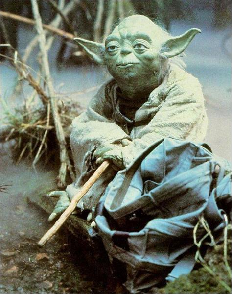 A quel âge Yoda mourut-il ?