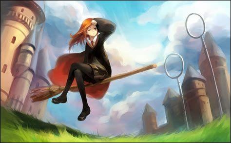Pratiques-tu le Quidditch ?