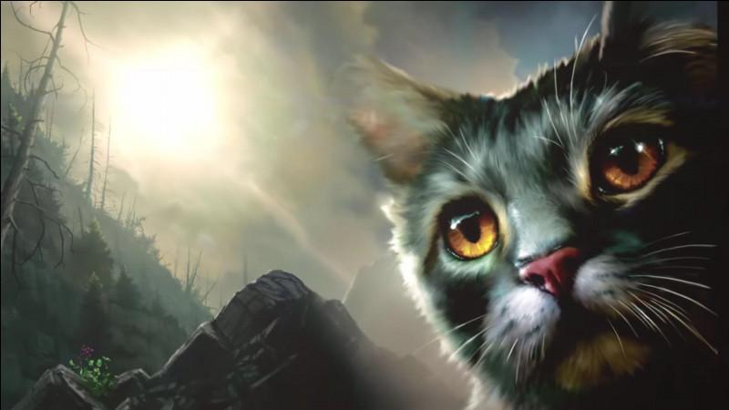 Qui est ce chat présent sur la couverture du deuxième tome du cycle 2 de la saga ?