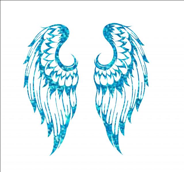 Et pour finir, dans quel livre entend-on le mot ailes ?