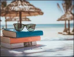 Quelle activité voudrais-tu faire pendant tes vacances ?