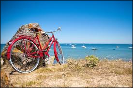 Quel est ton moyen de transport pour te déplacer depuis ton logement ? (pour aller faire des courses ou autres)