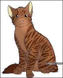 Qui est-ce chat de LGDC ?