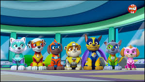 Quel est ce dessin animé dont les personnages principaux sont des chiens qui sauvent le monde ?